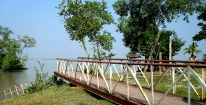 Karamjal Point Sundarbans