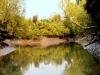 River-at-Sunderban